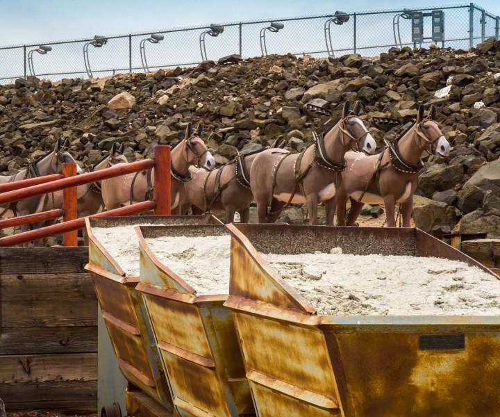 Borax ore carts with life-size replica of Twenty Mule Team at Rio Tinto's Borax Visitor Center. Image: Kim Stringfellow.